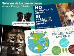 campañas de cuidado ambiente y animal
